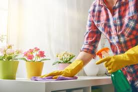 Spring Cleaning 101- Everyday Helper Tips